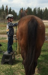 Finding the right match between horse and child is very important.