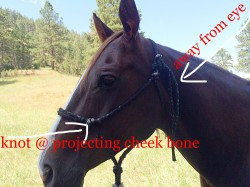 How to properly fasten a rope halter.