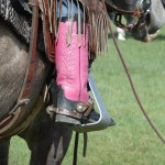 A Barrel Racer's Unlikely Obsession