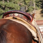 Saddle Woes: The Offside Cinch Strap