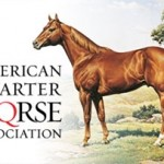 AQHA Stallion Report Deadline Approaching