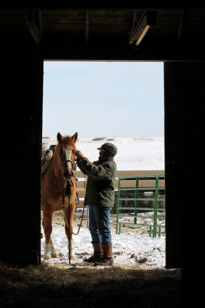 ranch work in winter