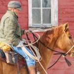 Winter Horse Work