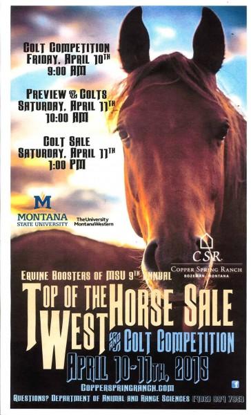 horsesale2015