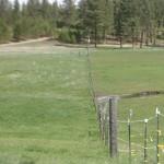 Horse Pasture Management Blog 2