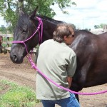 Old Methods Are New At Horsemanship Seminar; Part 2 of 3