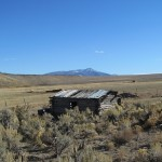 Nothing But A Whole Lotta Sagebrush