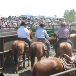 Ranch Rodeo Survival Guide