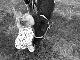 My girls love their horses.