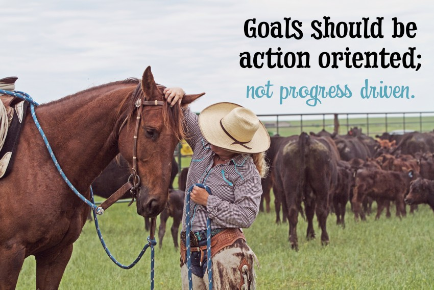 How to set goals for your horsemanship.
