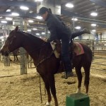 How to Get on Your Horse, Safely