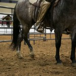 Moving Your Horse's Hips, Part 3