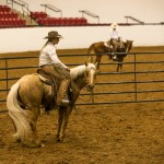 Moving Your Horse's Hips, Part 1