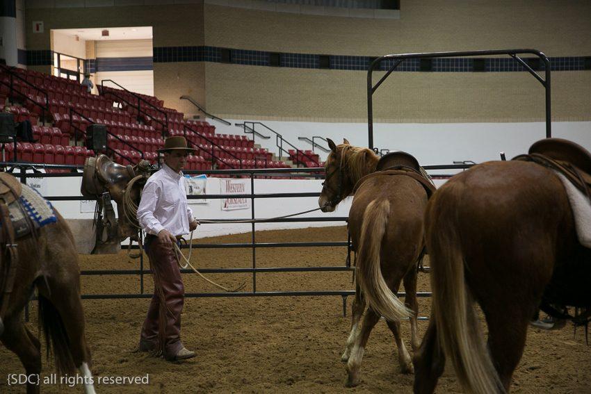 ricky quinn, moving your horse's hips, colt starting, groundwork