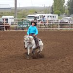 Reining Horse Experience