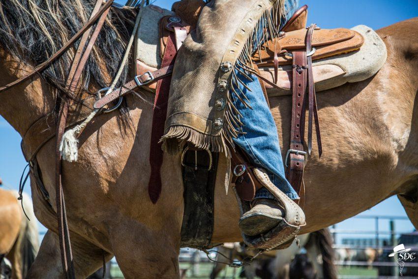 the details, calf branding, ranch life, ranching, cowboy, american west