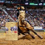 An Interview with Sherry Cervi