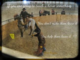 round pen learning, feet first horsemanship