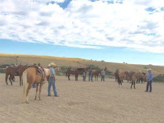 ground to the saddle