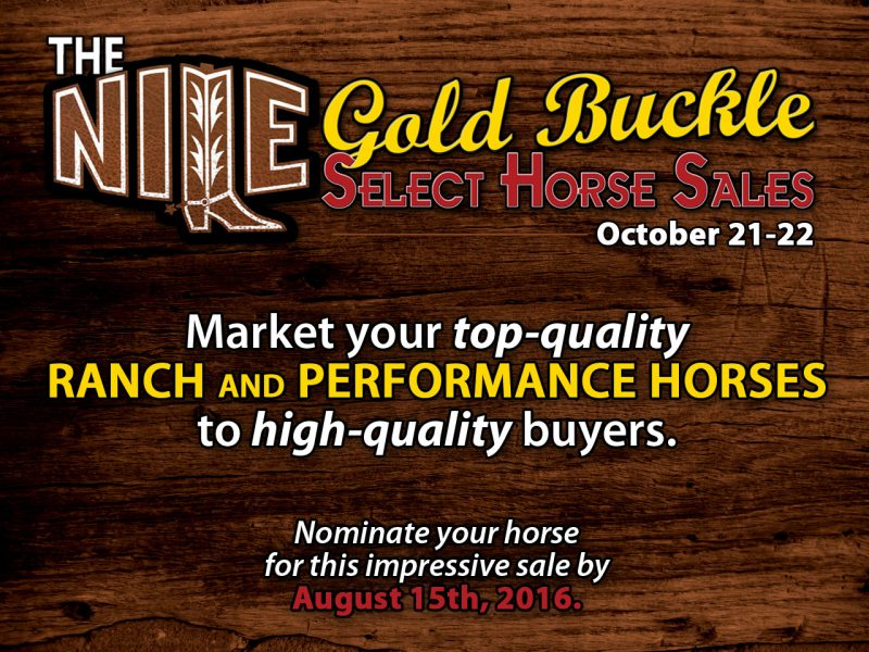 NILE Gold Buckle Select Horse Sale