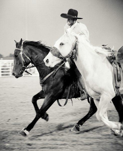 Wyo Wild Ride