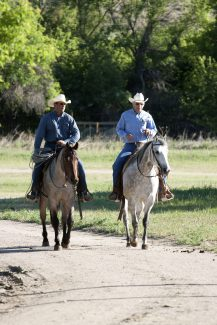 Wyoming Quarter Horse Ranch