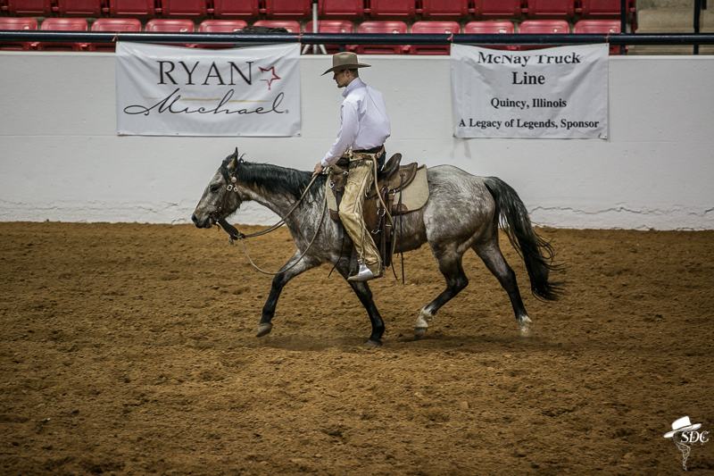Isaac Johnson, posting the trot, colt starting, horses, horsemanship, the south dakota cowgirl