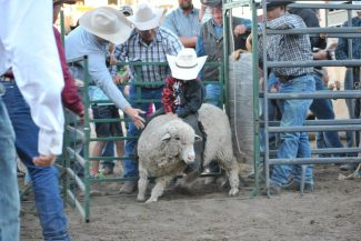 Stirling Family Memorial Ranch Rodeo
