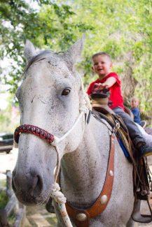 Buckin' Horse
