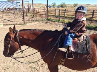 kid's horse