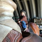 Groom Your Horse To Be a Kid's Horse: Part 2