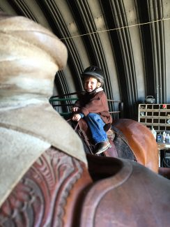Groom Your Horse To Be a Kid's Horse: Part 2 ...
