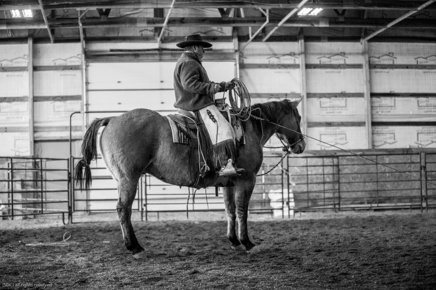 buckaroo roping, ranch roping, big loop roping, roping on the river, south dakota cowgirl photography, hackamore horse
