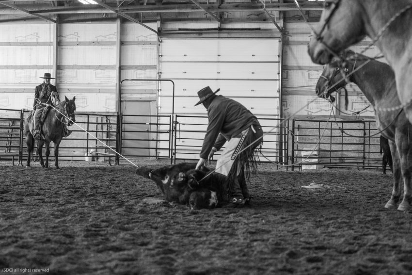 buckaroo roping, ranch roping, big loop roping, roping on the river, south dakota cowgirl photography