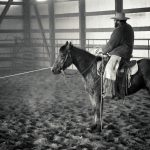 Training a colt in the branding pen-- a few tips