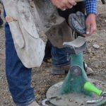 Horseshoeing: How To Be A Good Client
