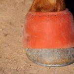 Ranch Horse Tack Hacks