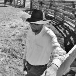 Cowboy Life In Black And White