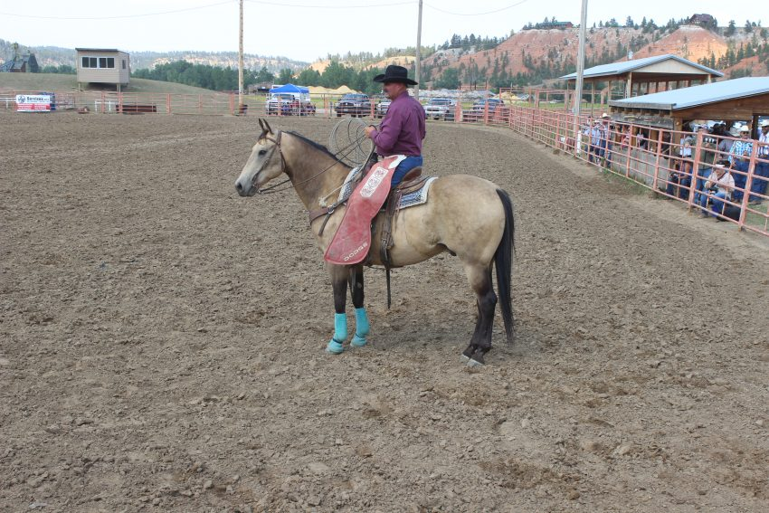 ride a horse feed a cowboy