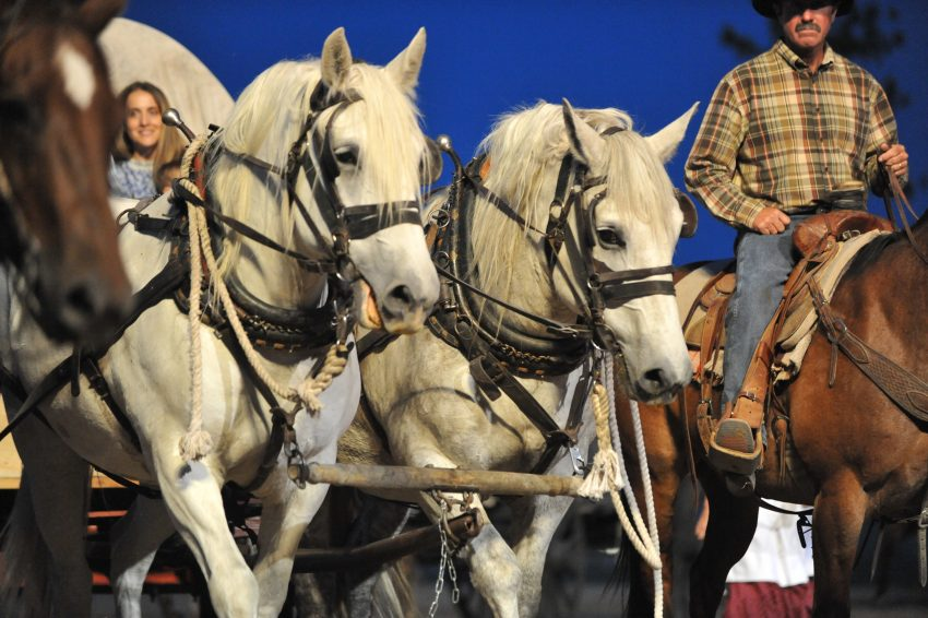 Lusk, Wyomings Legend of Rawhide .:: CavvySavvy.com - We Know Working Horses