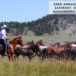 Weaver Quarter Horses Annual Sale - Sept. 16th