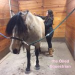 Top 10 Essential Oils for Horses