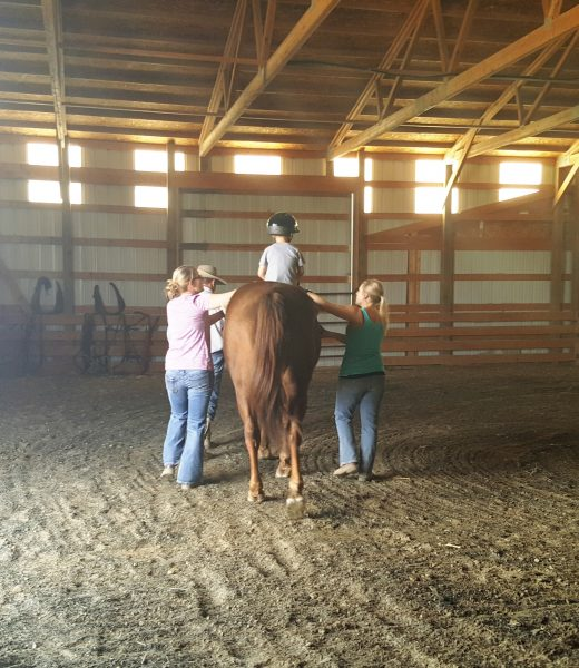 Ride and Shine Assisted Equine Therapy