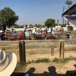 All In A Day's Work for Rodeo Parents