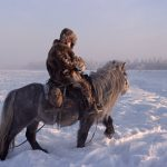 Short, Stocky And Furry: Cold-Weather Horse Breeds