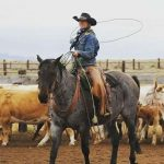 Wyoming Cowgirls Part 3