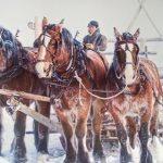 What Northern Cowgirls Wear in Winter