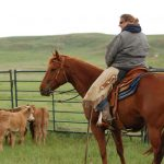 Wyoming Cowgirls Part 4