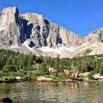 Wyoming Cowgirl - Jessie Allen
