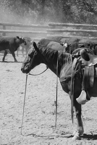cowboying